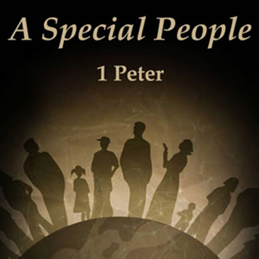 A Special People